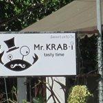 Mr, KRAB-I im Februar 2013