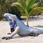 Ivana the Blue Iguana