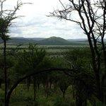 Udsigten fra Serengeti Serena Safari Lodge