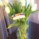 Beautiful white tulips given by Carla and John