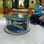 fish tank in reception area