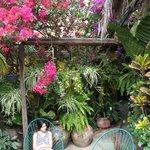 courtyard gardens1