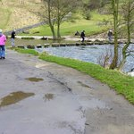 Dovedale stepping stones.