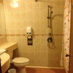 Unattractive bathroom and shower situation.