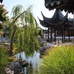 Chinese garden , Dunedin, NZ