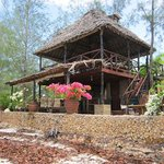 the wooden beach cottage