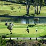 Green 6 Higueral Golf, Marbella, Costa del Sol