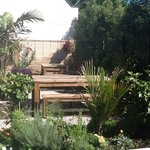 "A lovely oasis filled with many indigenous plants and shrubs plus some ""English pub garden"" favo"
