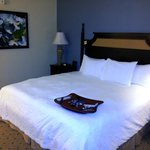 Photo de Hampton Inn Murrells Inlet/Myrtle Beach Area
