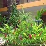 Hotel Plaza Palenque