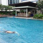 bar & piscine