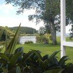 Vista del jardín desde el bar