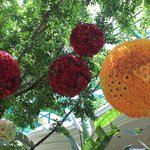 hangings on trees. flower decoration