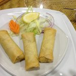 paneer spring roles - surprisingly tasty. big positive!