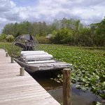 A scene near the Airboat dock