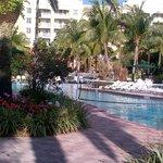 Pretty pool area