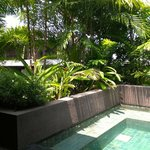 Outdoor private Plunge Pool