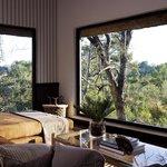 Londolozi Pioneer Suite Lounge