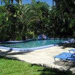 Heated Pool surrounded by gardens