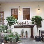 Gopal의 사진