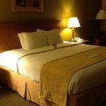 Photo de BEST WESTERN Green Valley Inn