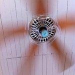 Ceiling fan!