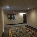 すっきりとして明るい雰囲気の廊下