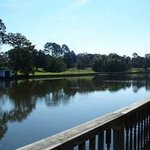 View of Cane River Lake from Violet Hill boat dock