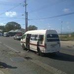 Reggae Bus No. 11 runs every few minutes