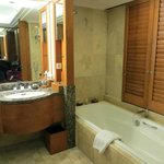Bathroom in our room-Not showing the cool shower!