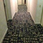 le montrose hallway
