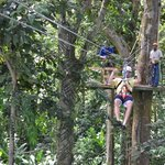 rainforest zip lining excursion