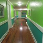 polished wood floors in hall and rooms; bright and cheerful