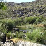 Doring river