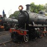 Royal Livingston Express