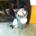 trash overflow