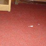 así estaba la alfombra al ingresar a la habitación