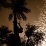 Couche de soleil in Biombo