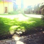 戶外草坪區