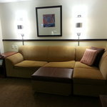 Entertainment Area's Couch