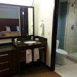 Sink & Shower Area