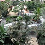 Atrium view from balcony