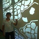 design of walls