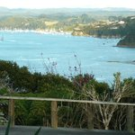 Watch the Opua ferry from your window.