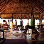 Vida Yoga Center