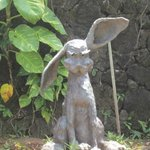Bad Hare Day in the Children's Garden