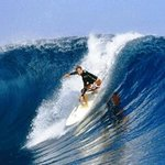 Surfing the Great Sea Reef from Nov. to April