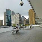Sydney Harbor YHA terrace