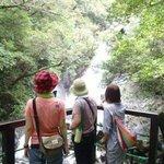 マイナスイオンたっぷりの雄大な滝へご案内