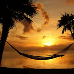 Lots of hammocks for romantic moments